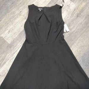 Black Fit and Flare Dress 14